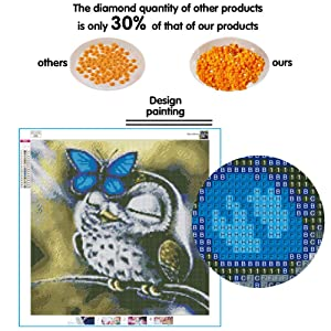 Dylan's Cabin DIY 5D Diamond Painting Kits for Adults,Full Drill Embroidery Paint with Diamond for Home Wall Decor(Owl/16x16inch) (Color: owl 3)