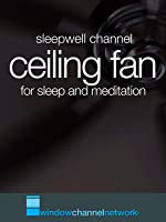 Ceiling Fan for Sleep and Relaxation