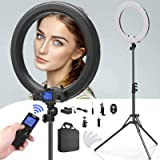 Ring Light with Wireless Remote Controller,IVISII 19 inch LED Ring Light with LCD Display Adjustable Color Temperature 3000K-5800K with Stand, for YouTube Makeup, Video Shooting, Vlog, Selfie (Color: IR-45N/With Remote Controller)