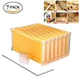 NOPTEG 7 Pcs Auto Flow Comb Beehive Frames Kit, Raw Frame Honey Beekeeping Beehive Hive Frames Harvesting with 7 Harvest Tubes and a Harvest Key for Beekeepers (Honey Beehive Frame) (Color: Honey Beehive Frame)