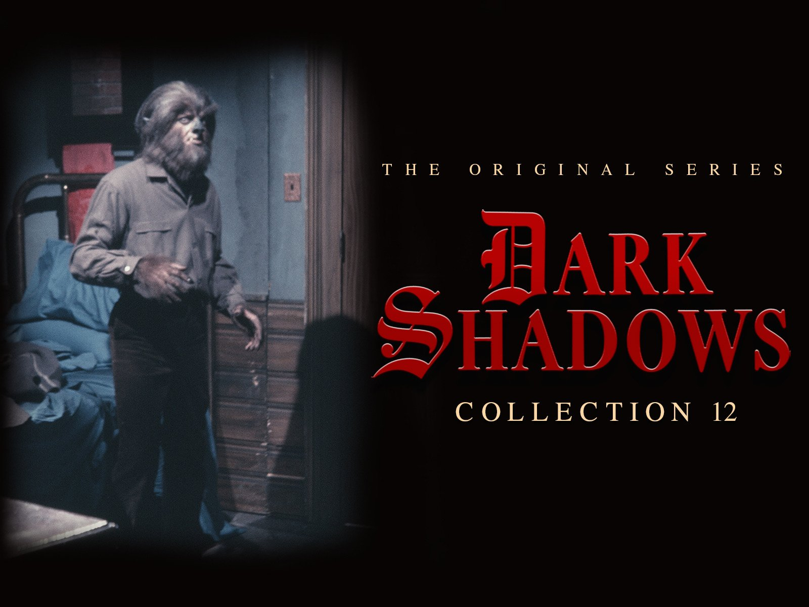 Dark Shadows - Season 12