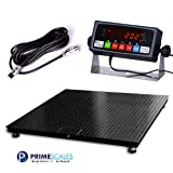Prime Scales 10000x1lb Floor Scale | Pallet Scale with SFL Indicator (48