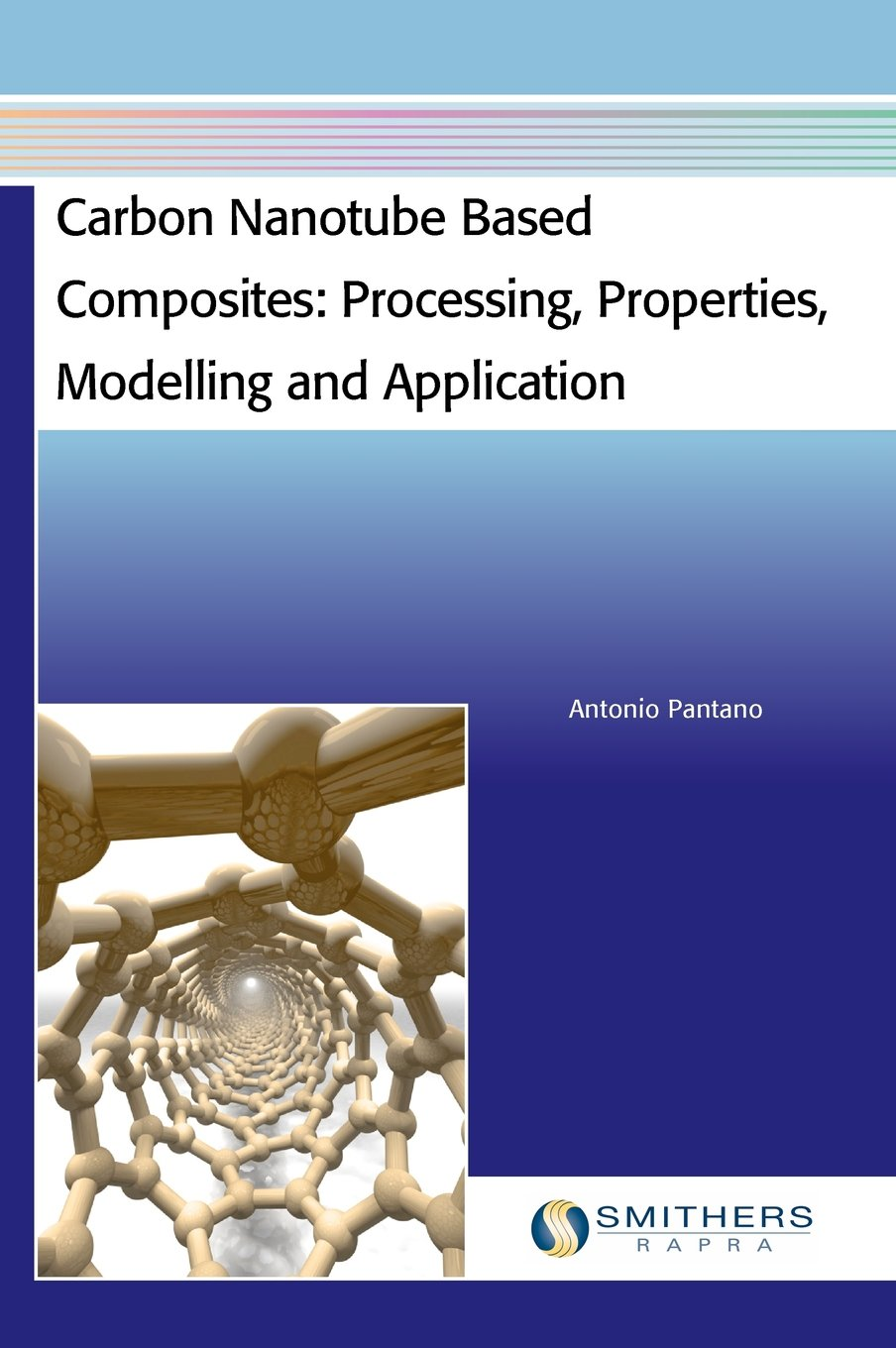 Carbon nanotube based composites [electronic resource] : processing, properties, modelling and application