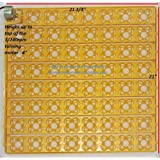 110Volt AC 252 Quail Egg Automatic Turner for Incubator Avian Poultry Local USA Distributor 110 Volt Full Warranty (Color: Yellow, Tamaño: 252 Egg Incubator tray)