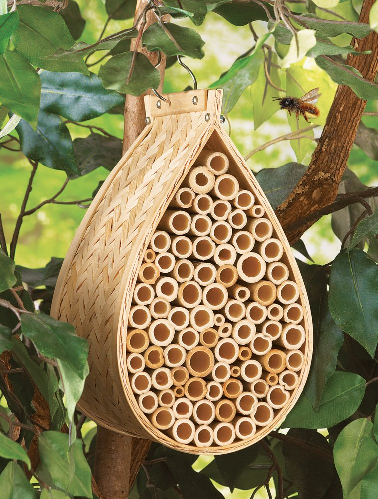 Amazon.com : Bamboo Mason Bee Hive House : Patio, Lawn & Garden