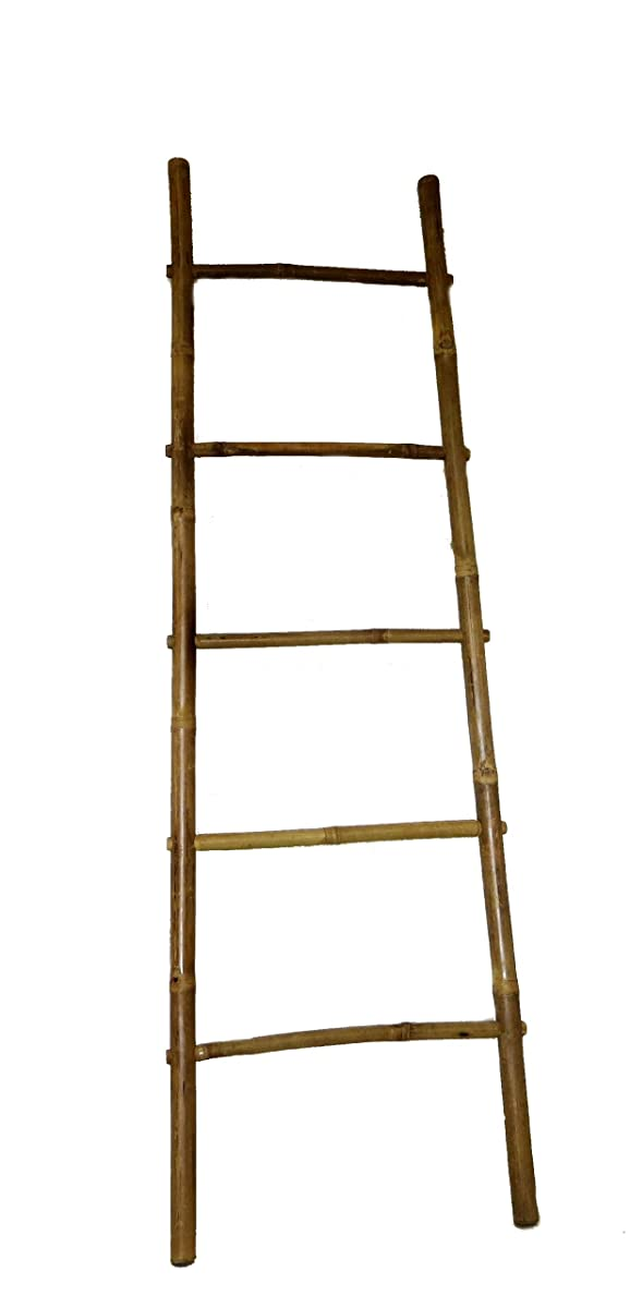 Bamboo Ladder Rack, 72H""