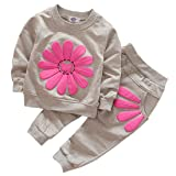 Toddler Baby Girls Sunflower Clothes Set Long Sleeve Top and Pants 2pcs Outfits Fall Clothes (Grey,Age 3T) (Color: Gray, Tamaño: Age(3T))