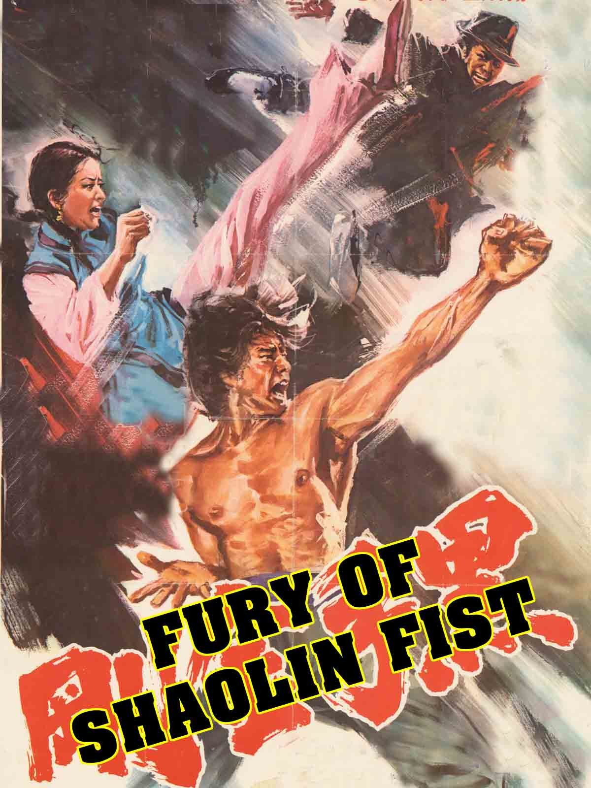 Fury Of Shaolin Fist
