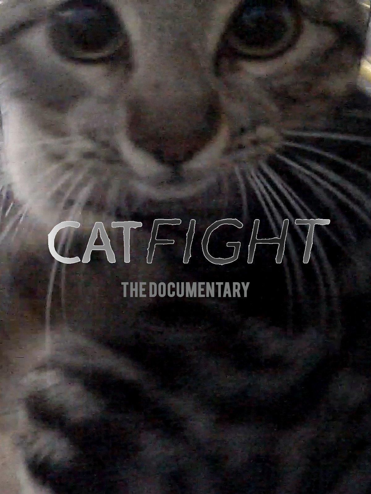 CatFight on Amazon Prime Instant Video UK