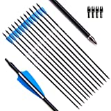 Tiger Archery 30inch Fiberglass Arrow With Replaceable Arrowhead Spine 500 for Recurve and Compound Bow Hunting and Practice Hunting(Pack of 12)