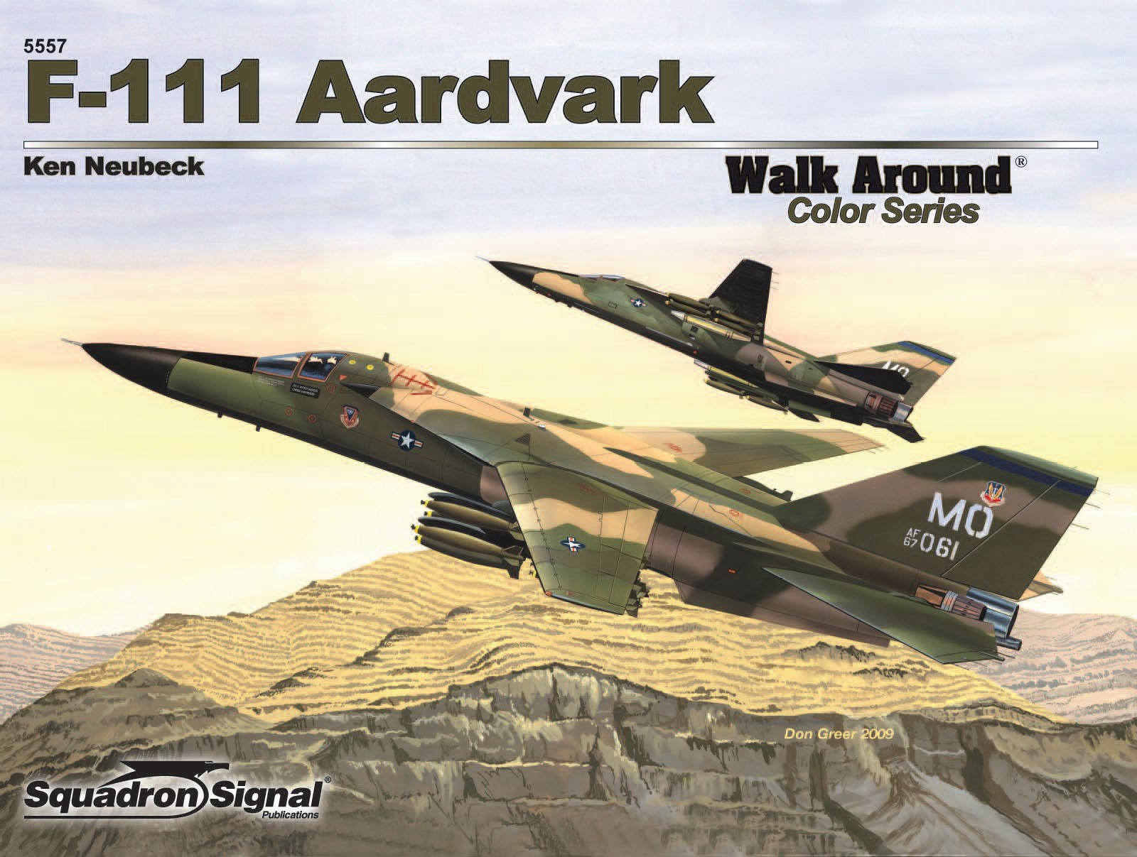 111 Aardvark - Walk Around F 111 Aardvark For Sale