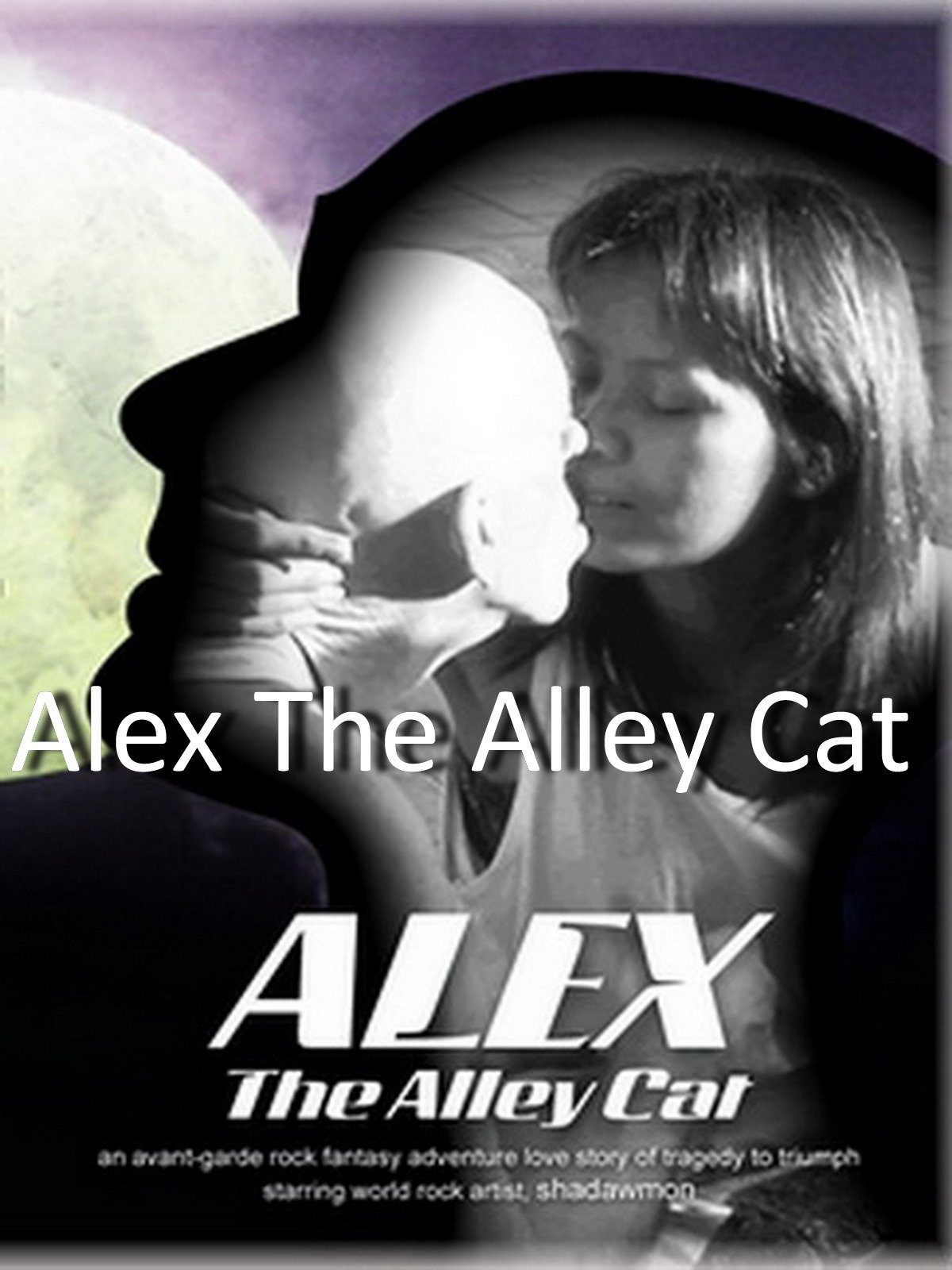 Alex The Alley Cat