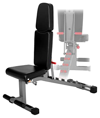 XMark Adjustable Dumbbell Weight Bench