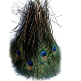 ADAMAI Natural Bleached Dyed Peacock Feather Eyes Tail Decoration 25-30cm Pack of 100 (Natural) (Color: Natural)