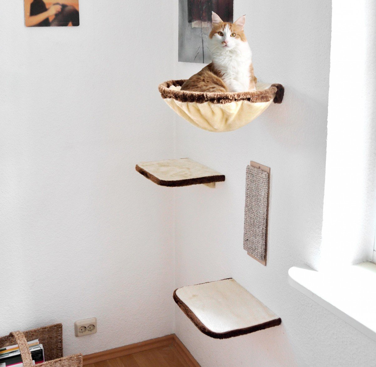 rezension silvio design katzen-kletterwand 4-teilig