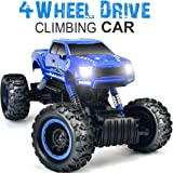 DOUBLE E 1:12 RC Cars Monster Truck 4WD Dual Motors Rechargeable Off Road Remote Control Truck, Blue (Color: Blue)