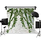 Kate 10x6.5ft/3m(W) x2m(H) Wedding Background Brick Wall Backdrop Spring Backgrounds Natural Green Lawn Backdrop Photography Background Photo Studio (Color: B90127, Tamaño: 10x6.5ft)