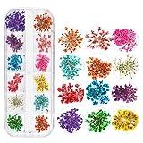Koolsants 12 Colors Nail Sticker Art Decor Gypsophila Starry Dried Flowers Dazzling Tips Sequins Colorful Decoration (Color: Multicolor)