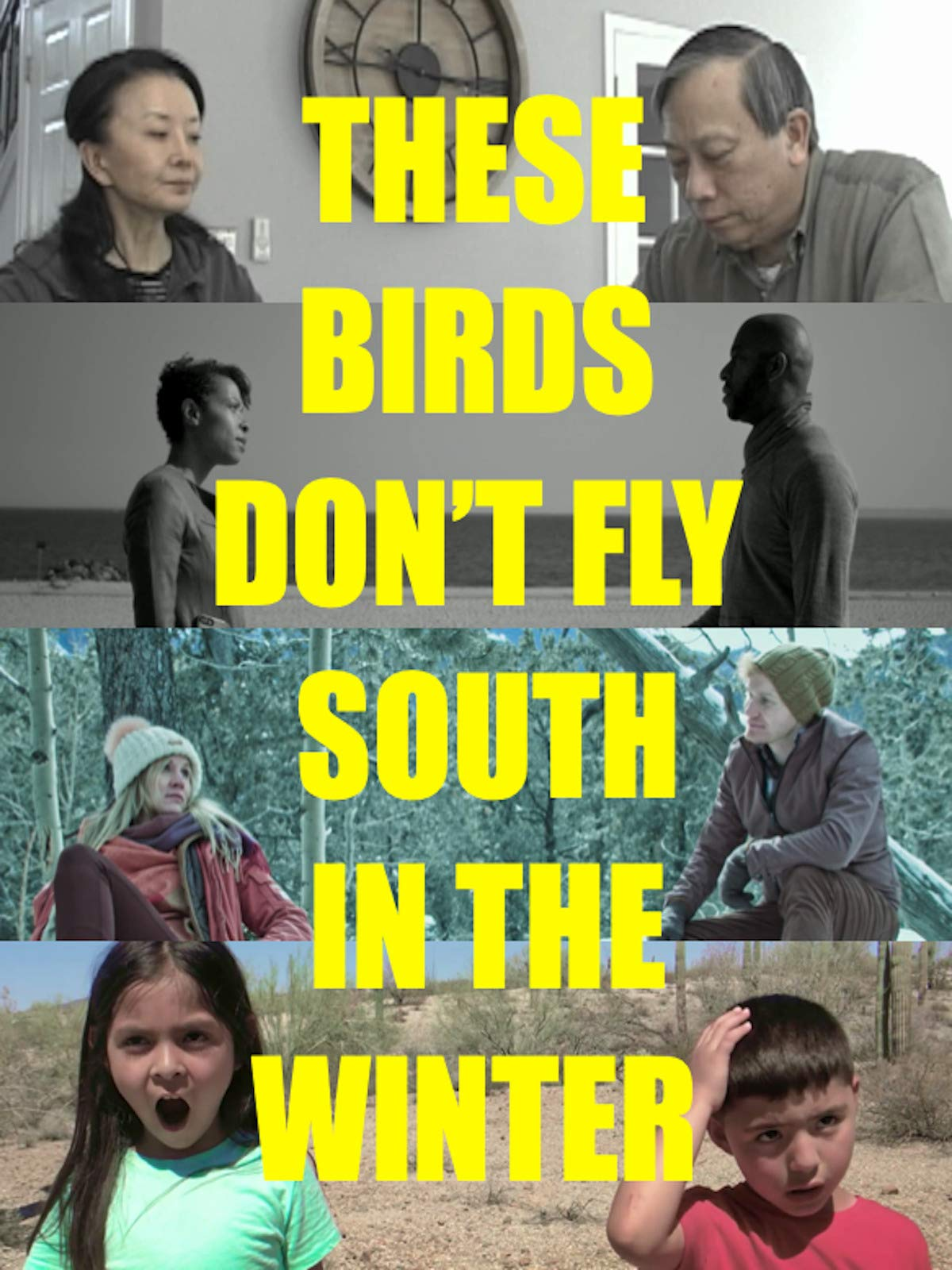 These Birds Don't Fly South in the Winter
