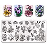Summer Fruit Nail Art Stamping Template Tropical Punch Pattern Rectangle Image Plate Stamping Polish Needed BP-L067 (Color: BP-L067)