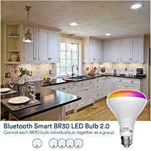 Smart Flood Light Bulb - Color Changing BR30 Flood Light Bulb 9W(65W Equivalent) E26, Music Sync Dimmable Timing Function Light Bulb, No Hub Required (BR30-13W - 4) (Color: Multi-colored, Tamaño: BR30-13W - 4)