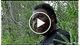 Runaway Slave (Music Video)