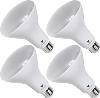 Triangle Bulbs 65-watt Equivalent LED Flood Light