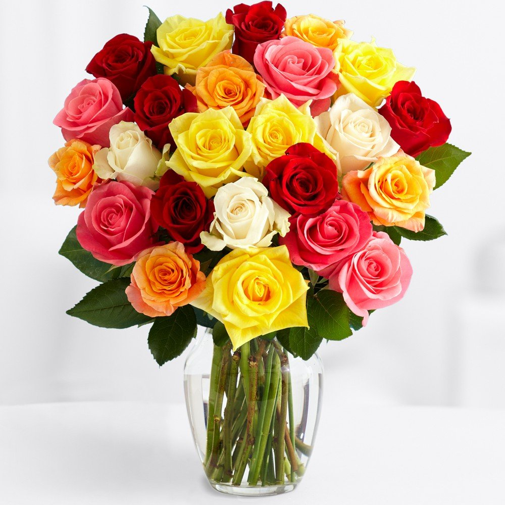 ProFlowers - Free Shipping - Two Dozen Rainbow Roses (with FREE glass vase) - Flowers