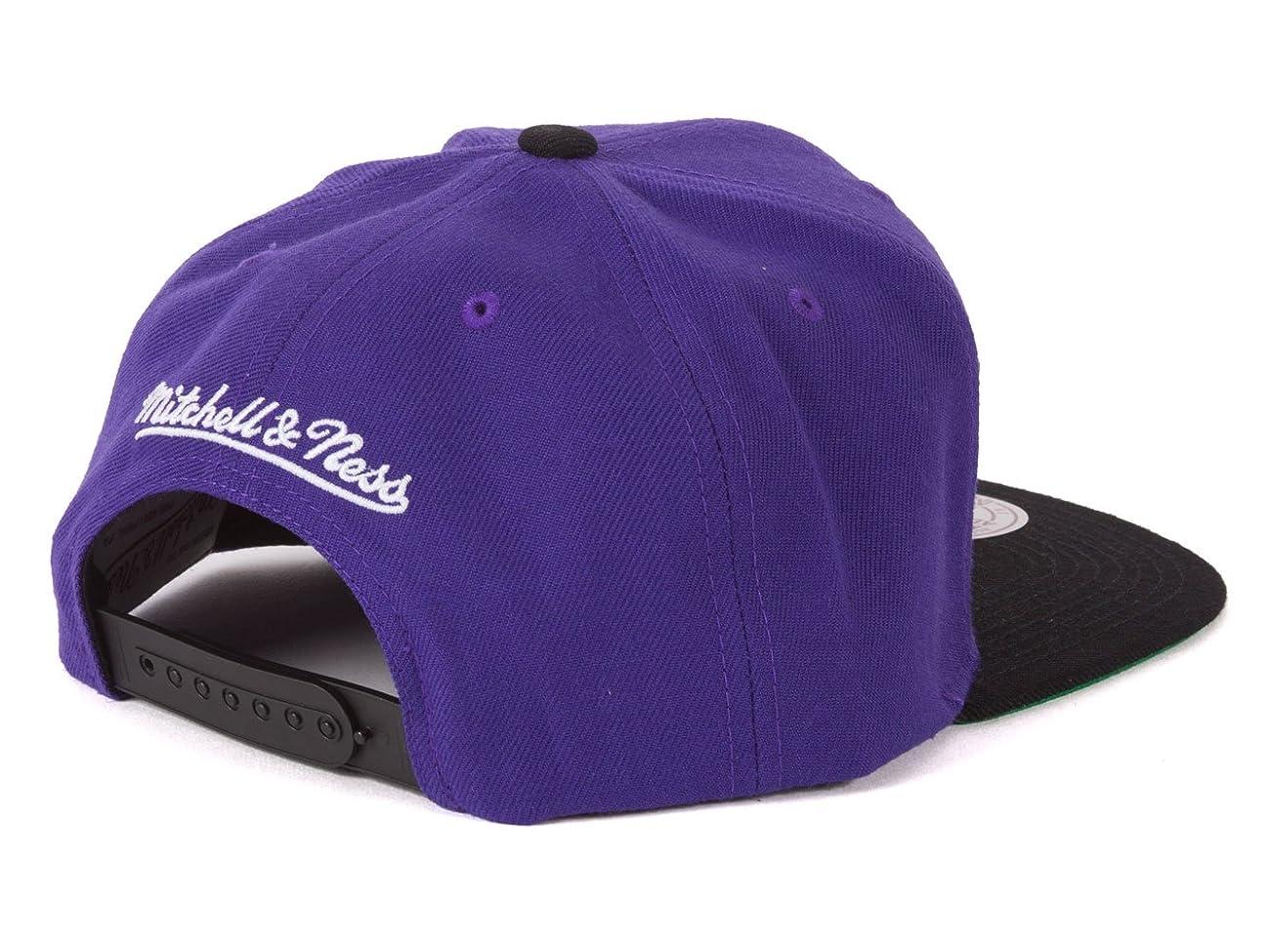 Toronto Raptors 2-Tone Vintage Snap back Hat 2