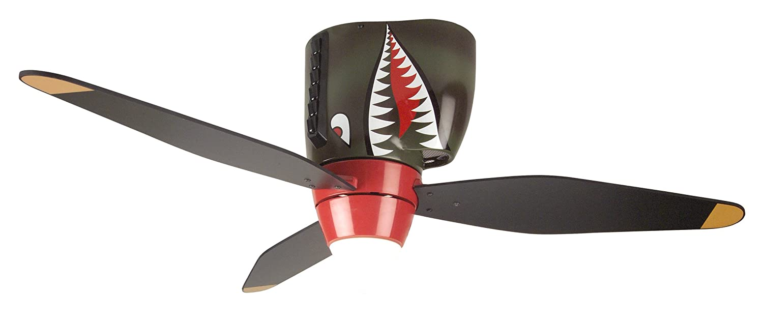 Best Ceiling Fans With Lights Reviews