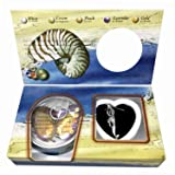Wet Products Love Purity Wish Pearl Kit - Harvest Your Own Pearl from a Real Freshwater Oyster, Comes with Mermaid Silver Plated Necklace - Great for Gift! (Color: Mermaid, Tamaño: 1-Pack)