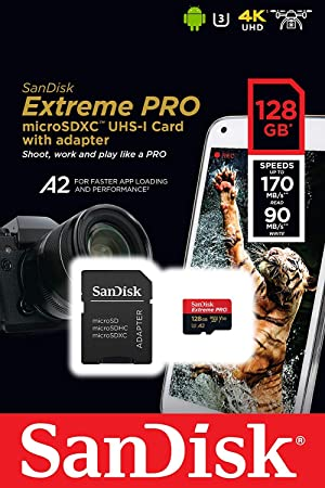 SanDisk 128GB Micro SDXC Extreme Pro Memory Card Bundle Works with DJI Osmo Action Camera (SDSQXCY-128G-GN6MA) Class 10, UHS-1, U3, 4K, Plus (1) Everything But Stromboli (TM) SD, MicroSD Card Reader (Color: Class 10 128GB)