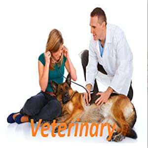Veterinarian 