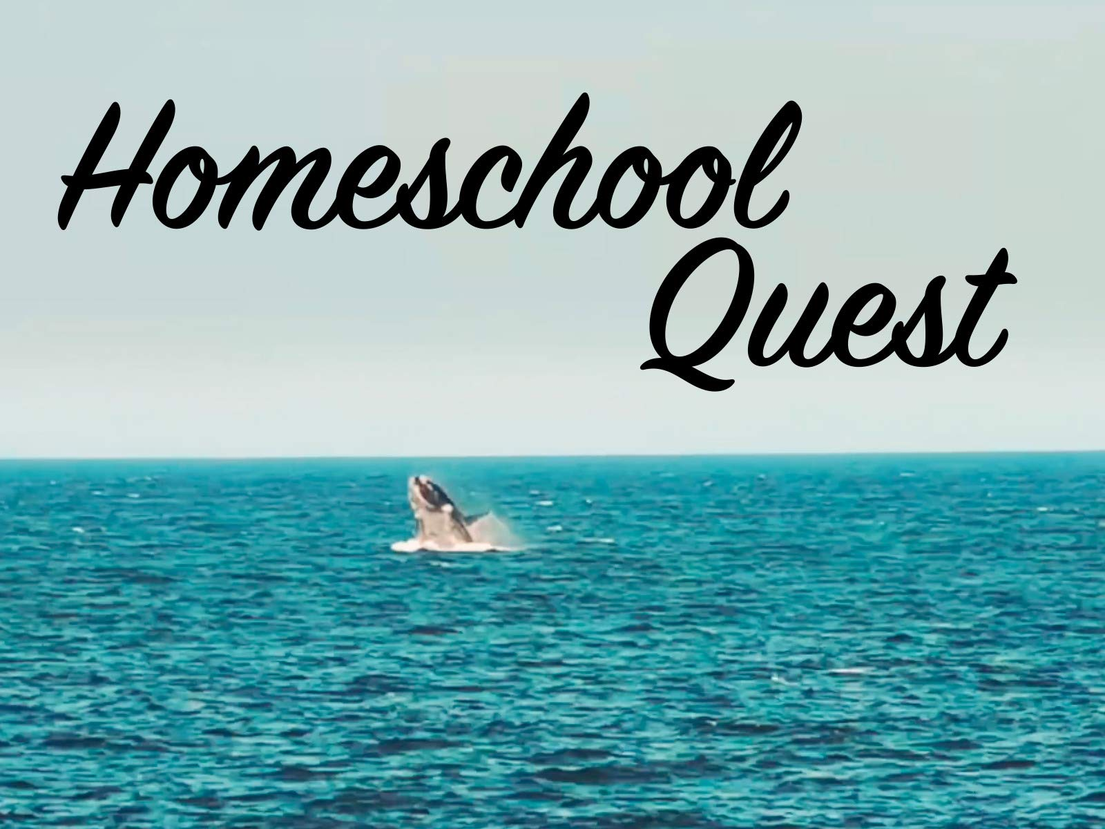 Homeschool Quest on Amazon Prime Video UK