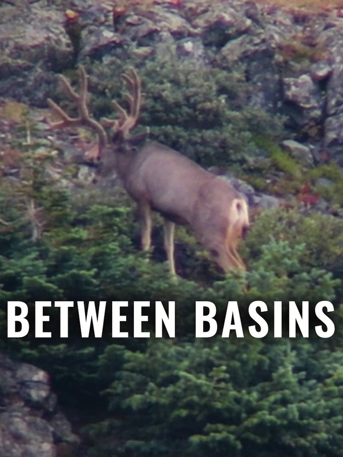 Between Basins