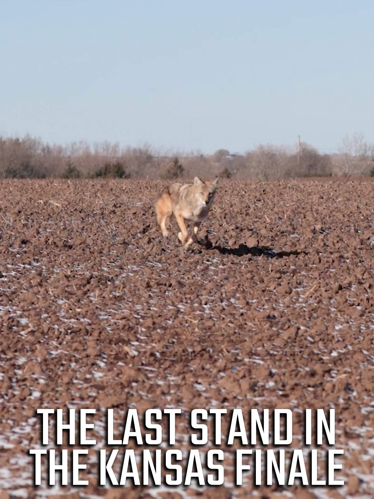 The Last Stand In The Kansas Finale