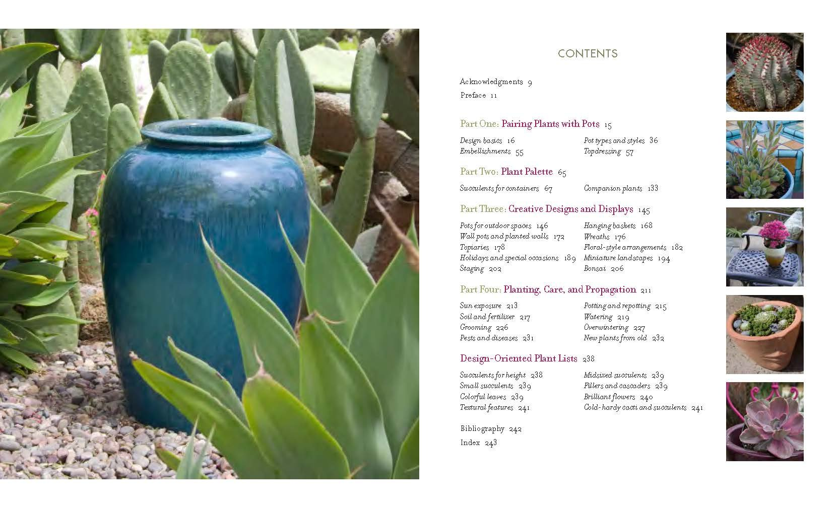 Buy Designing With Succulents Book Online At Low Prices In India   Designing With Succulents Reviews & Ratings  Amazon