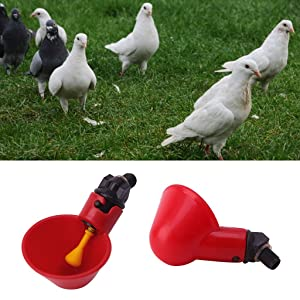 Qupida Water Supply For Poultry, Chicken Drinking Automatic Fountain Set water bowl