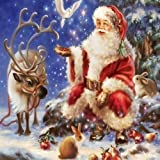 Adarl 5D DIY Diamond Painting Rhinestone Pictures of Crystals Embroidery Kits Arts, Crafts & Sewing Cross Stitch (Christmas B) (Color: Christmas B, Tamaño: 30*40cm/11.81*15.75inch)