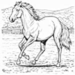 Adult Coloring Pages For Animals Pro...