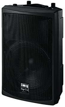 Professional PA Speaker Cabinet, 600WMax (PAB-612/SW)
