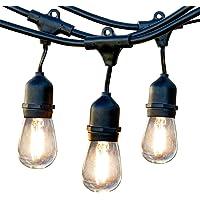Newhouse Lighting CSTRINGLED18 48 Ft. Outdoor Weatherproof LED String Lights (Black)