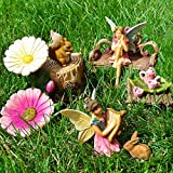 Fairy Garden Miniature Friends Fun Set of 8 pcs, Premium Quality Hand Painted Kit For Outdoor, House, Flat Decor, By Mood Lab