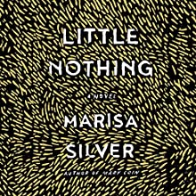 Little Nothing Audiobook by Marisa Silver Narrated by Saskia Maarleveld