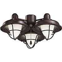 Emerson 3-Light Boardwalk Cage Ceiling Fan Light Kit (Oil Rubbed Bronze)