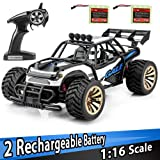 Distianert 1: 16 Scale Electric RC Car on & Off Road RTR Vehicle 2.4Ghz Radio Remote Control Car 15km/H High Speed Racing Monster Truck with two Rechargeable Batteries Best Gift for Kids (Color: Blue)