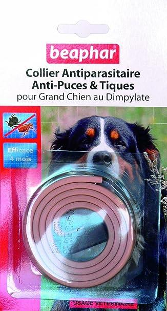 beaphar collier antiparasitaire antiparasitaire anti puces et tiques pour grand chien chien. Black Bedroom Furniture Sets. Home Design Ideas