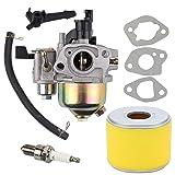 Trustsheer 16100-ZE0-817 Carburetor for Honda GX110 GX120 Engine WDP20X WDP30X Water Pump 16100-ZH7-W51 16100-ZE1-814 Carb with Air Filter Spark Plug