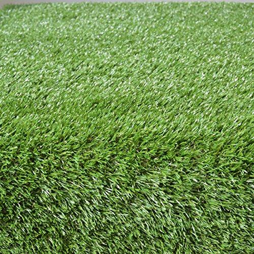 Potty Grass for Pets - Walmartcom