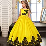 HUANQIUE Girls Pageant Wedding Dresses Party Flower Girl Embroidered Gowns Yellow 13-14 Years (Color: Yellow, Tamaño: 13-14 Years)